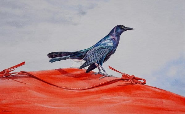Grackle Poetry Class